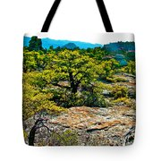 Sunlight On Balanced Rock Trail In Chiricahua National Monument-arizona Tote Bag