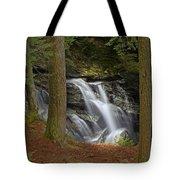 Sunlight On Bingham Falls Tote Bag