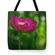 Sunlight On Lotus Flower Tote Bag