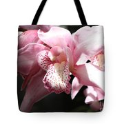 Sunlight On Pink Orchid Tote Bag