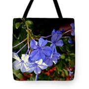 Sunlight On The Blues Tote Bag
