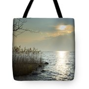 Sunlight On The Lake With Pampas Grass Tote Bag