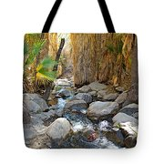 Sunlight Over Rocky Andreas Creek In Indian Canyons-ca Tote Bag
