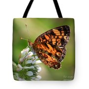 Sunlight Through Butterfly Wings Tote Bag