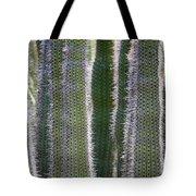 Sunlight Through Cacti Tote Bag