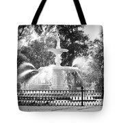 Sunlight Through Savannah Fountain With Vignette Tote Bag