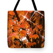 Sunlight Through The Leaves Tote Bag