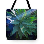 Sunlight's Beneficary Tote Bag