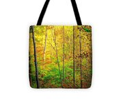 Sunlights Warmth Tote Bag