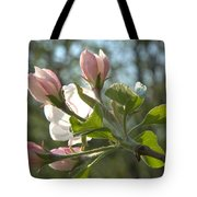 Sunlit Apple Blossoms Tote Bag