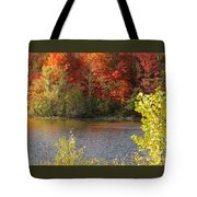 Sunlit Autumn Tote Bag