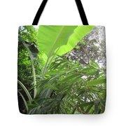 Sunlit Banana With Bamboo Tote Bag