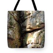 Sunlit Boulder On Shades Mountain Tote Bag