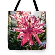 Sunlit Fancy Pink Columbine Tote Bag