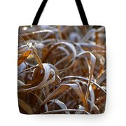 Sunlit Frost Tote Bag