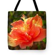 Sunlit Hibiscus Tote Bag