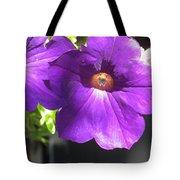 Sunlit Petunias Tote Bag