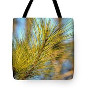 Sunlit Pine Leaders Tote Bag