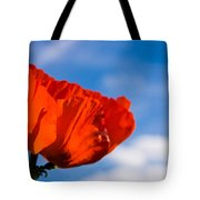 Sunlit Poppy Tote Bag