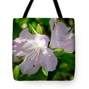 Sunlit Rhododendrons Tote Bag