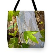 Sunlit Sycamore Leaves In Andreas Canyon In Indian Canyons-ca Tote Bag