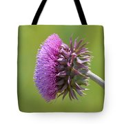 Sunlit Thistle Tote Bag