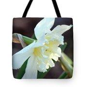 Sunlit White Daffodil Tote Bag