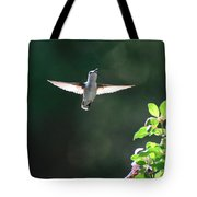 Sunlit Wings Tote Bag