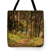 Sunlit Woods In Late Autumn Tote Bag