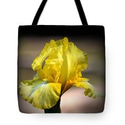 Sunlit Yellow Iris Tote Bag