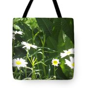 Sunning Ourselves Tote Bag
