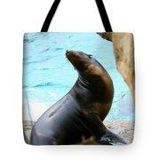 Sunning Sea Lion Tote Bag
