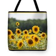 Sunny Days 8466 Tote Bag