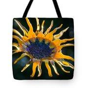 Sunny Glass Tote Bag