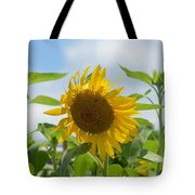 Sunny July 2013 Tote Bag