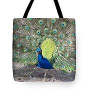 Sunny Peancock Tote Bag
