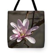 Sunny Pink Magnolia Blossom Tote Bag
