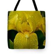Sunny Rain Tote Bag