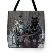 Sunny Sleigh Ride Tote Bag