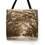 Sunny Southern Day With Old World Framing Tote Bag