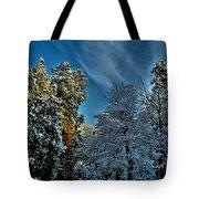 Sunny Winter Day Tote Bag