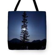 Sunny Winter Pine Tote Bag