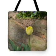 Sunny Yellow Tulips Series  Picture B Tote Bag