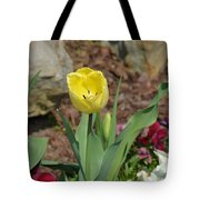 Sunny Yellow Tulips Series  Picture C Tote Bag