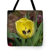 Sunny Yellow Tulips Series  Picture D Tote Bag