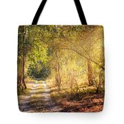 Sunray In The Autumn Forest Tote Bag