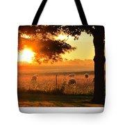 Sunrise 365 15 Tote Bag