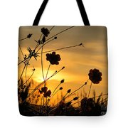 Sunrise 365 28 Tote Bag