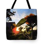 Sunrise 365 29 Tote Bag