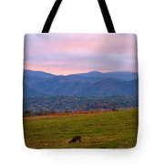 Sunrise And Deer In Cades Cove Tote Bag